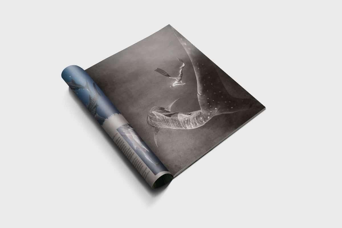 Seaquest Adventure Book 3 2